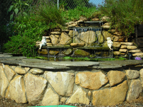 Pond Construction - garden pond design and construction
