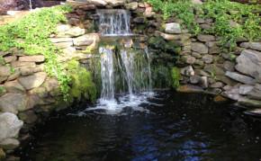 Backyard Pond Design: Koi Pond Designs: Waterfall Design