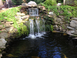 Backyard Pond Design: Koi Pond Designs: Waterfall Design