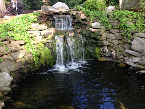 Backyard pond designs for Garden waterfall design