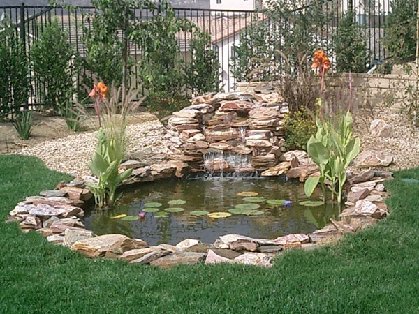 Koi ponds residential pond construction koi pond builders for Pond yard design