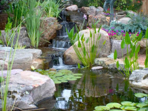 Pond Repair: How to find and repair a pond leak