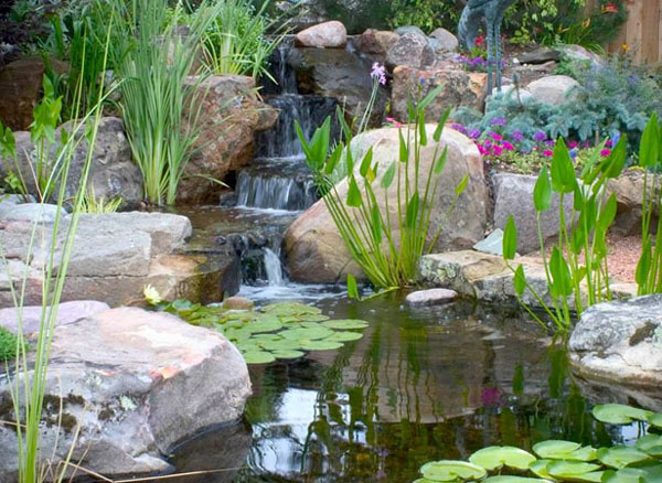 Pond Building - 3/4 - Pacific Ponds \u0026 Design - Custom Pond ... - garden pond design and construction