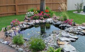 Pond Building: Residential Pond builders: Backyard Pond Ideas