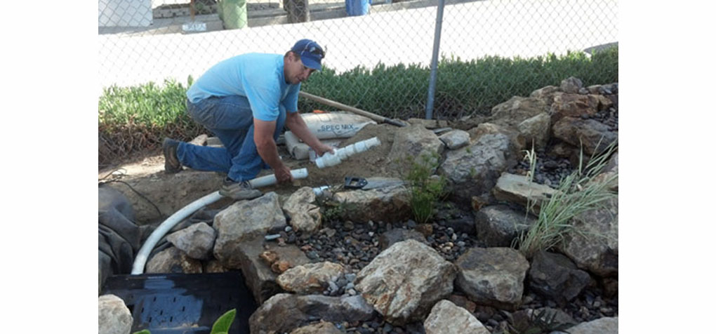 What is pond maintenance why is it important for Garden pond design and construction
