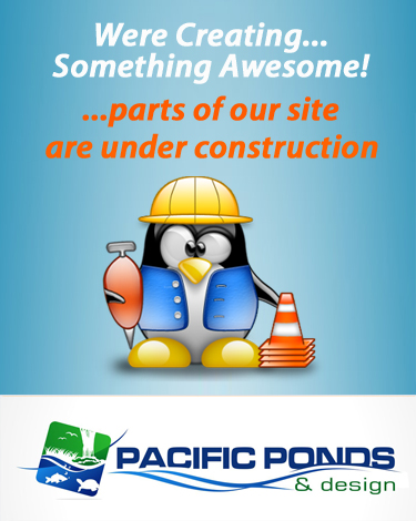 Pacific Ponds and Design - Custom Pond Construction. Pond builders, pond building, pond construction, pond design, construction, pond design, waterscapes. Some Parts Of Our Site Are Under Construciton
