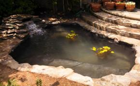 Pond building: Koi pond construction