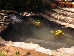 Pond building: Koi pond construction