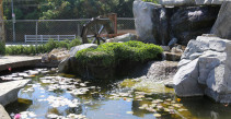 Artificial Rock Pond and Waterfall