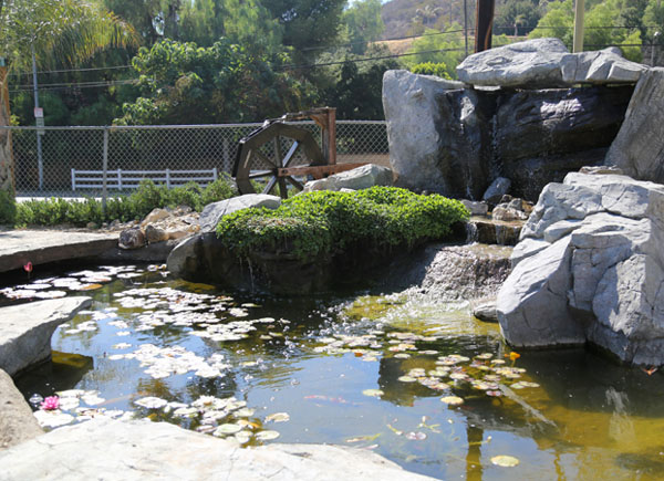 Artificial rock pond and waterfall pacific ponds and design for Pond waterfall construction