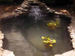 Flagstone pond