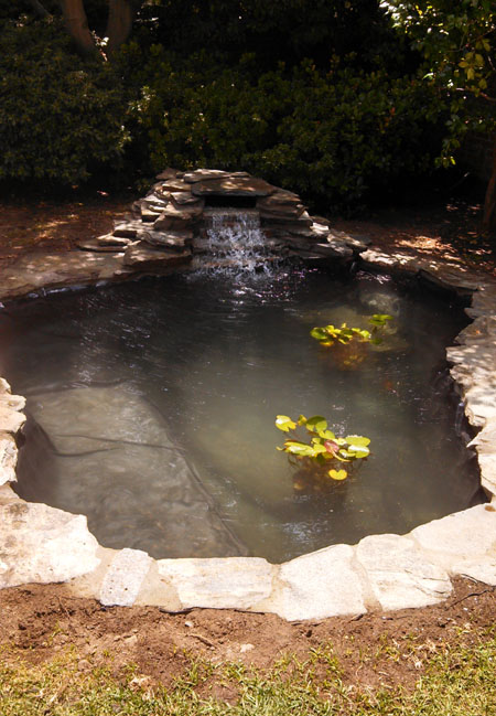 Flagstone pond, Pond contractor, Pacific Ponds and Design