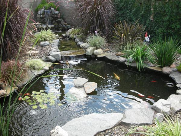 Large Natural Ponds