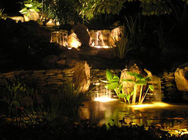 Pond lighting, Pond contractor,  Backyard pond