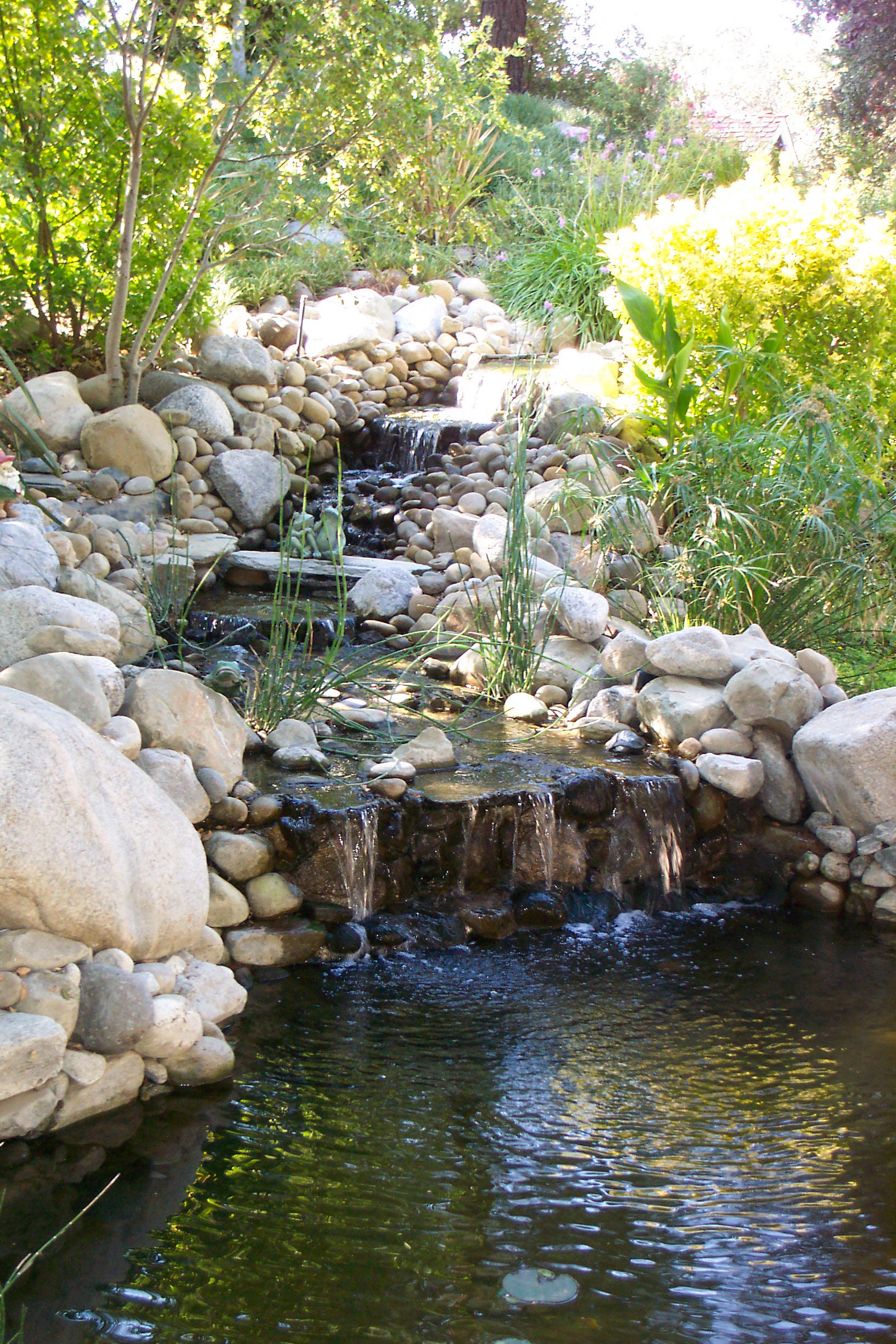Rock waterfall large waterfall koi pond pacific ponds for Koi pond builder