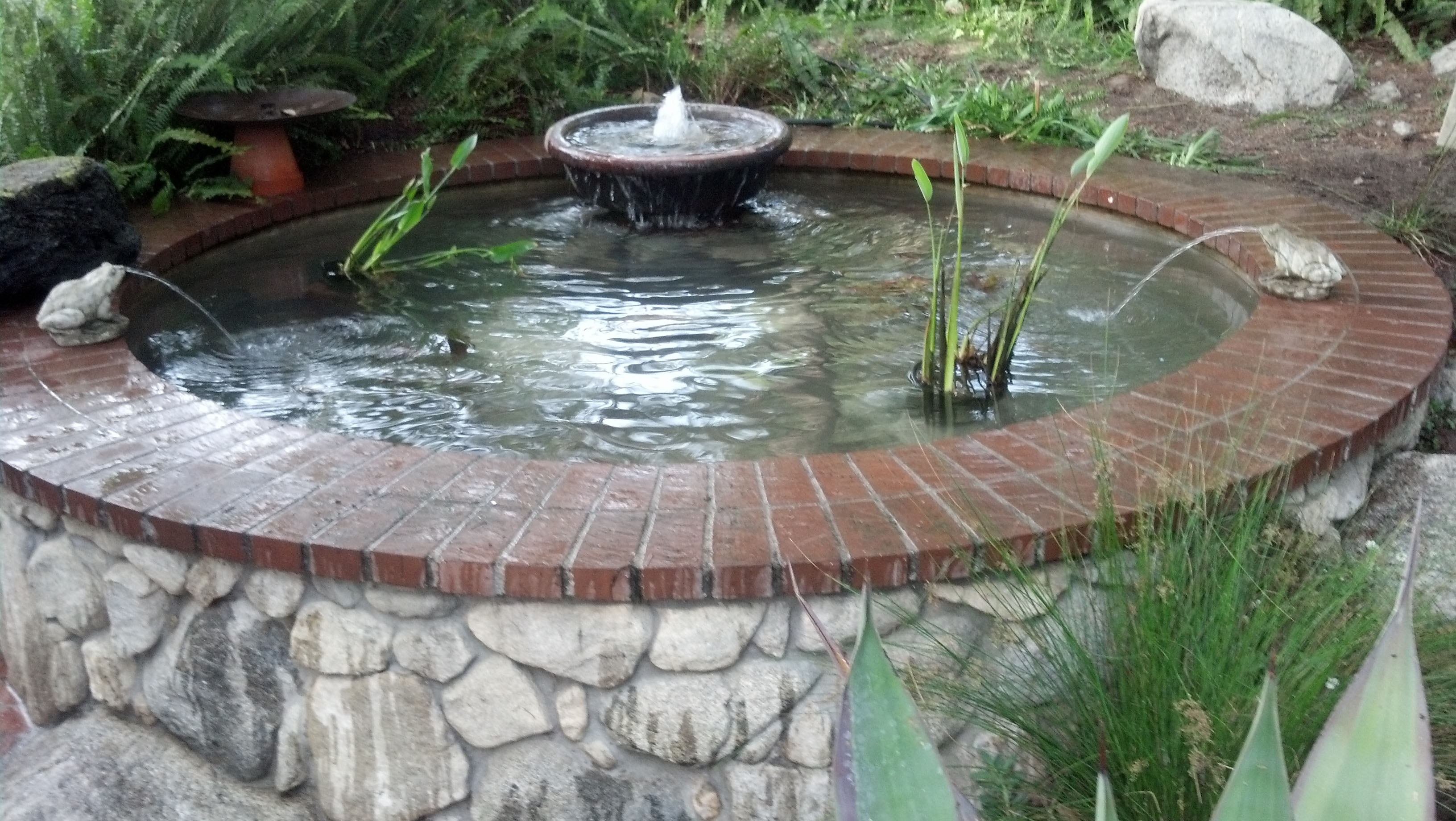 Pond building pond design ideas for Simple koi pond