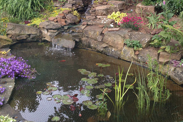 Water garden, Pond netting, Pond contractor