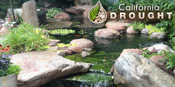 Can I have a pond during a water shortage? California Drought
