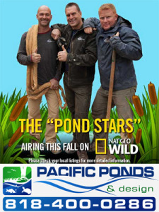 Aquascape + Pond Stars = Pacific Ponds and Design and Certified Aquascape Contractors