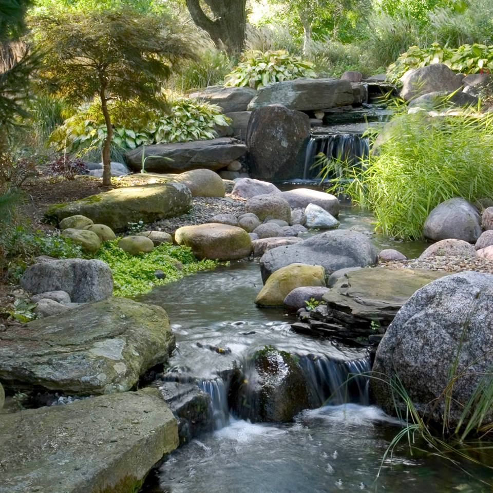 8 things to consider before you build a pond